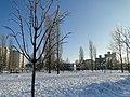 Зима в парке Победы - panoramio.jpg