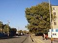 Кентау. Вид 001. 2007.10.JPG
