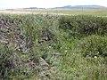 Окоп - panoramio (1).jpg