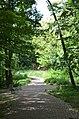 Парк Берёзовая роща в Киеве. Фото 34.jpg