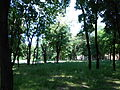 Парк Шевченка 5.JPG