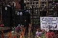 Первая слева - могила Л.Б. Хавкиной.jpg