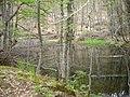 Самево Езеро (Езерче) 07.jpg