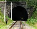 Тоннель, поезд, человек.jpg