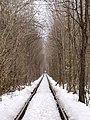 Тунель зимою - panoramio.jpg