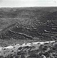 הרי יהודה - דירוג-JNF001046.jpeg