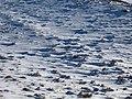 بارش برف در روستای جاسب قم- قله ولیجیا 34.jpg