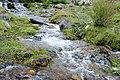 南迦巴瓦峰下的小溪 - panoramio.jpg
