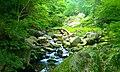 小鹿渓谷 - panoramio (2).jpg