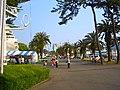 東海大学海洋科学博物館 - panoramio.jpg