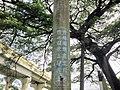 橋頭糖廠椰子樹上對於國旗、國歌的標語.jpg