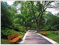 红梅公园小路 - panoramio.jpg