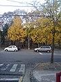 선릉 주변 - panoramio.jpg