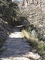 049 - inca trail.jpg