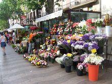 Venditori di fiori nelle Rambles