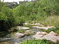 080512 Río Ripoll - Les Arenes 11.jpg