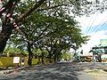 09418jfBinalonan San Manuel Pangasinan Barangays Roads Landmarksfvf 12.JPG