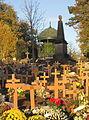 0 Mons - Nouvelles sépultures dans l'ancien cimetière classé (2).JPG