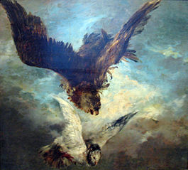 Falcon Attacking a Pigeon