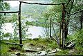1961 Aurlandsdalen mot Nesbøgalden-og-Nesbø.jpg
