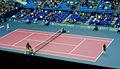 2005 Kremlin Cup – Men's Singles Final.JPG