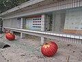2008년 중앙119구조단 중국 쓰촨성 대지진 국제 출동(四川省 大地震, 사천성 대지진) IMG 5922.JPG
