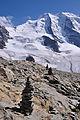 2011-08-02 15-50-33 Switzerland Berninahäuser.jpg