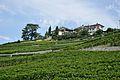 2012-08-12 12-43-25 Switzerland Canton de Vaud Grandvaux.JPG