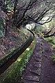 2012-10-27 13-39-36 Pentax JH (49283362968).jpg