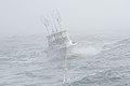 2012 Week in the Life of the Coast Guard 120801-G-BI776-194.jpg