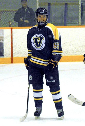 Laurentian University - Voyageurs' women's hockey team 2013–14