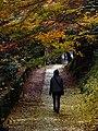2014-11-24 Sekiganji 石龕寺 DSCF4696.jpg