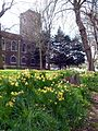 2017-Woolwich, St Mary's Gardens 11.jpg