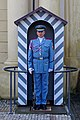 20190816 Czeski żołnierz na staży przy wjeździe na Zamek na Hradczanach 1327 5246 DxO.jpg