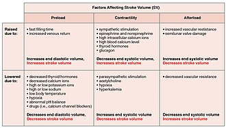 Stroke volume - Image: 2035 Factors in Stroke Volume