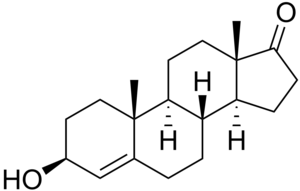 4-Dehydroepiandrosterone - Image: 3beta Hydroxyandrost 4 en 17 one