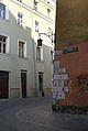 7724vik Kraków w obrębie Plant. Foto Barbara Maliszewska.jpg