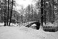 9075vik Park w Pszczynie . Foto Barbara Maliszewska.jpg
