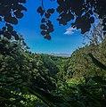Açores IMG 1181 (36218973946).jpg