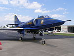 AMK Blue Angel P6160291.JPG