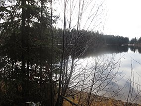 A Calm Rainy Morning in Late Autumn at Browne Lake Provincial Park.JPG