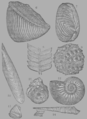 A Treatise on Geology, plate 9.png