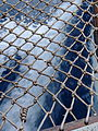 A boat's wake, seen through a rope net.jpg