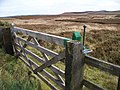 A gate onto the Moor - geograph.org.uk - 1525992.jpg