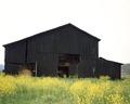 A traditional black Kentucky tobacco barn LCCN2011632269.tif