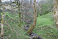 A tributary of the River Eden - geograph.org.uk - 1271909.jpg