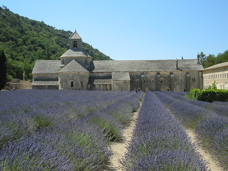 Fichier:Abbaye de senanque lavande.jpg