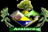Acaiacarsbrasoes.png