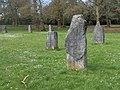 Acton Park Gorsedd stones (6).JPG