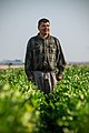 Agricultural Land-Based Training Association - ALBA Grows Success.jpg